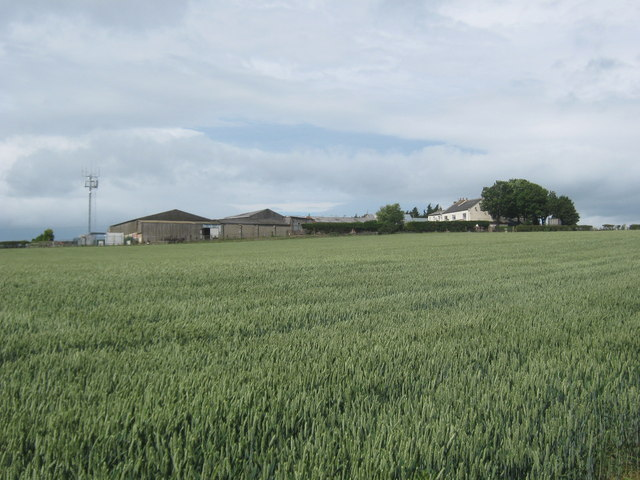 Dove Cote Farm between Dalton Piercy and Elwick