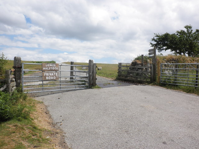 Cattle grid, on the road to Lower Halstock