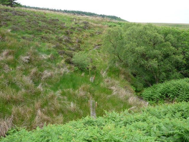 Loch Ryan Coastal Path