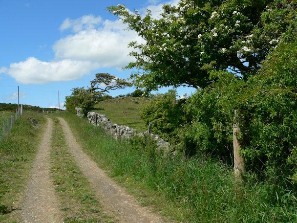 Farm track above Barmeal