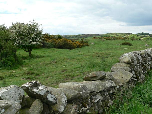 Rough grazing below Fell of Barhullian