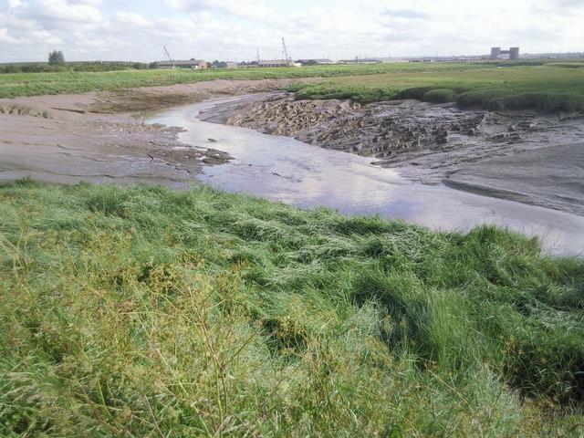 Dartford Creek at low tide