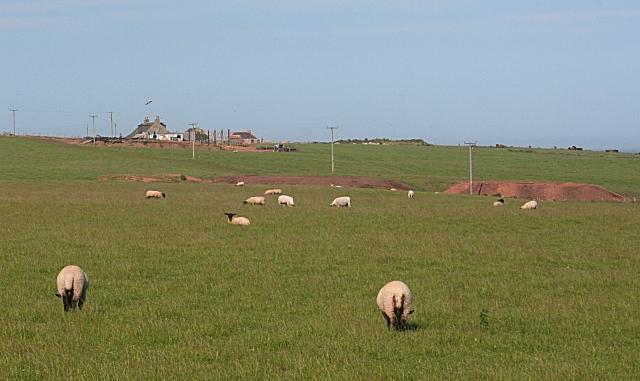 Ogston Farm