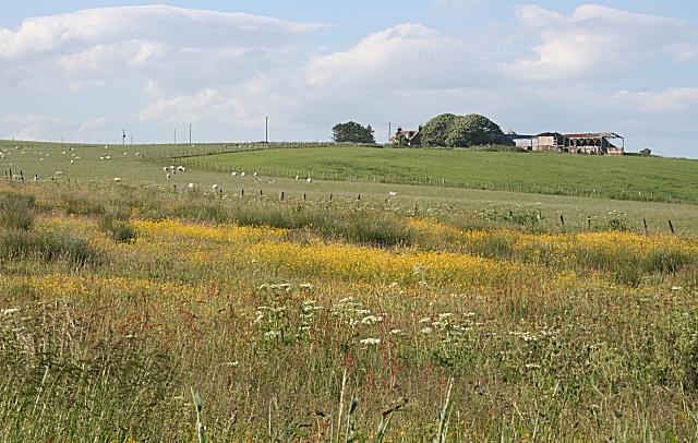 Ward Farm