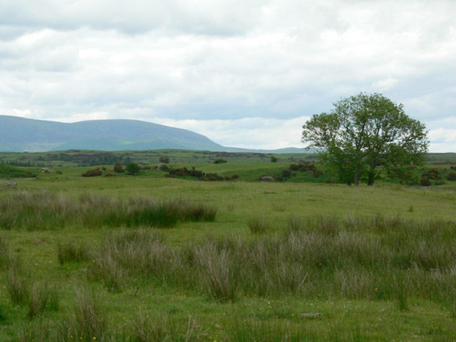 Moorland south of Newton Stewart