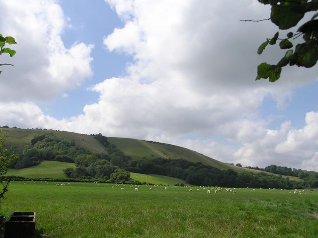 South Downs from the north