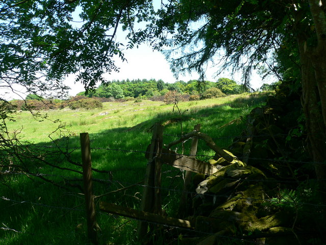 Field corner, variably fenced