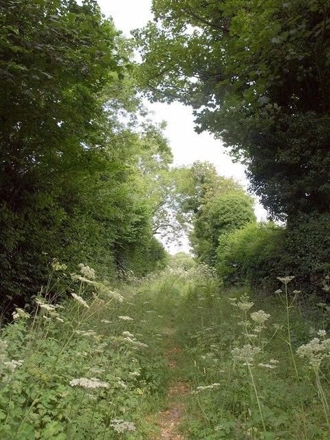 Footpath to Pimperne