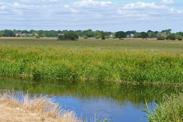 River Avon Water Meadows, Christchurch