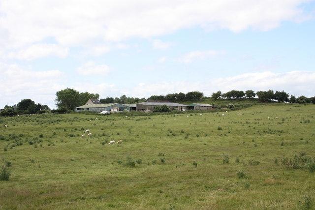 Castle Hills Farm