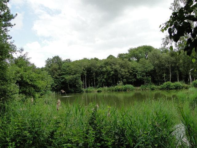 Fishing Lake  #2