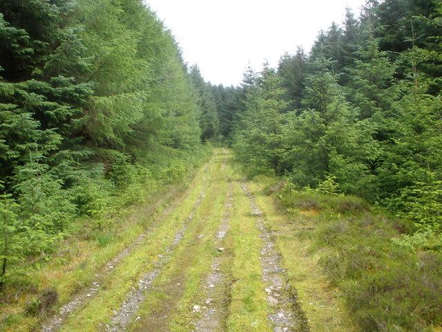 Forestry road below Stob an Eas