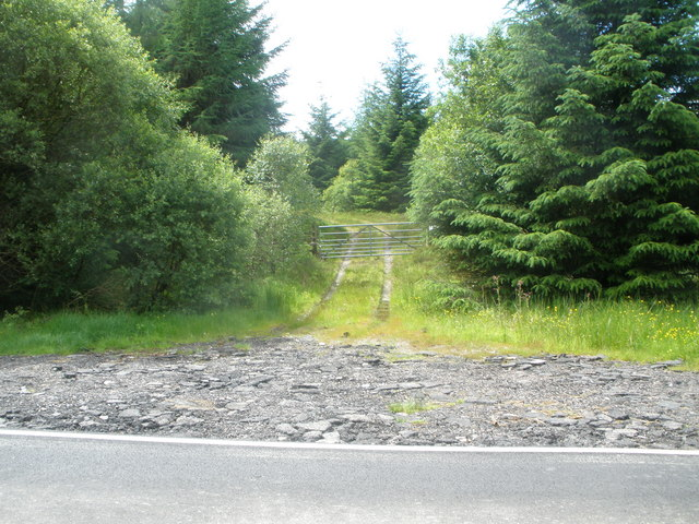 Forestry road off the B839