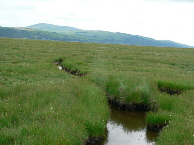 Drainage channel on mud flats
