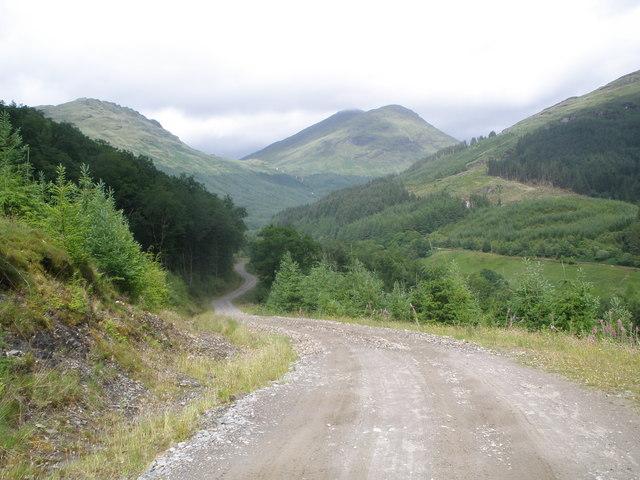 Forestry Road above Glen Goil