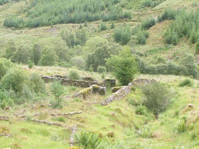 Disused sheepfank in Gleann Canachadan