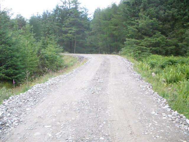 Forestry Road Gleann Canachadan