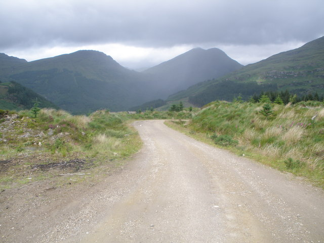 Road in Drimsynie Forest