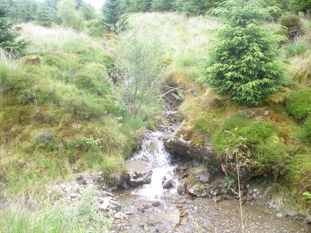 Unnamed burn in Drimsynie Forest