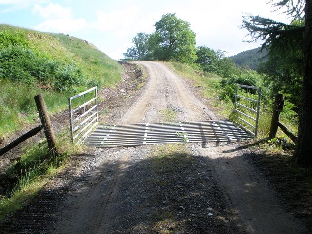 Cattle grid on the forestry road in Glen Goil