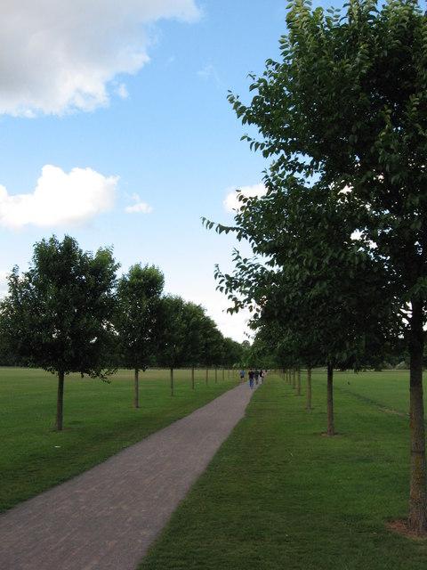 Path through Pontcanna Fields