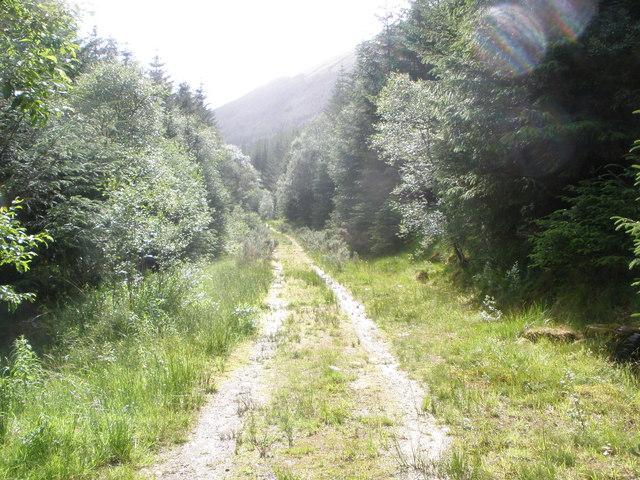Forestry road Gleann Mor