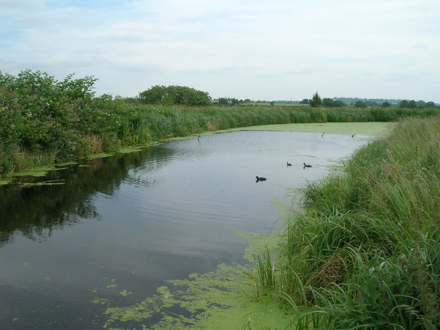Grantham Canal near Bassingfield