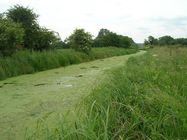 Grantham Canal near Bassingfield
