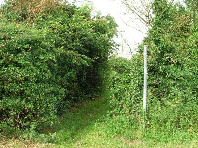 Bridleway near North Farm