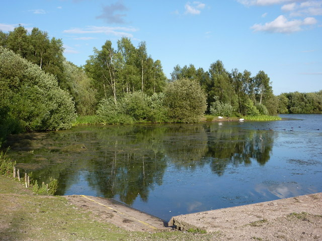Daneshill Lakes nature reserve
