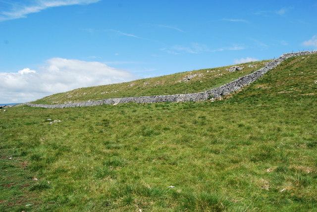 Typical upland limestone pasture