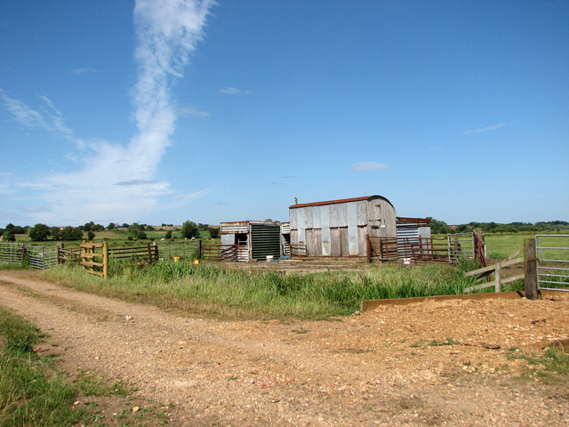Cattle pen and sheds south of College Farm