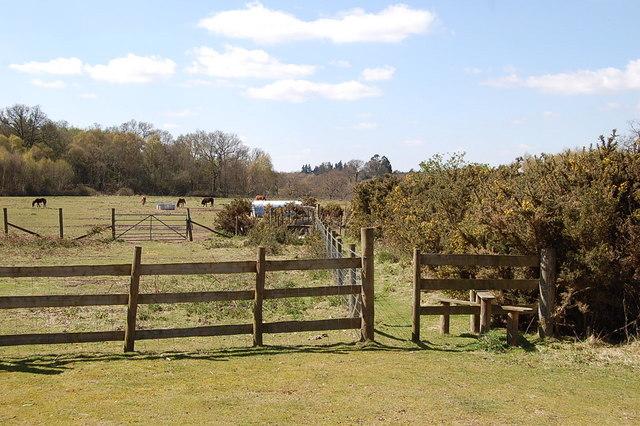 Stile on path to Plumley Farm