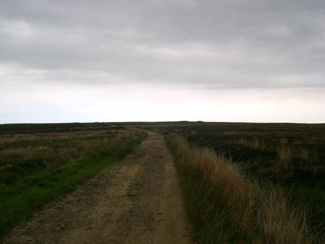 Track  over  Moor