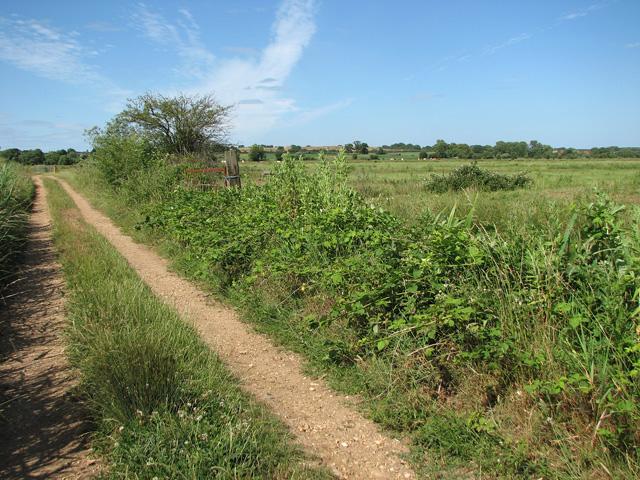 Open gates on farm tracks