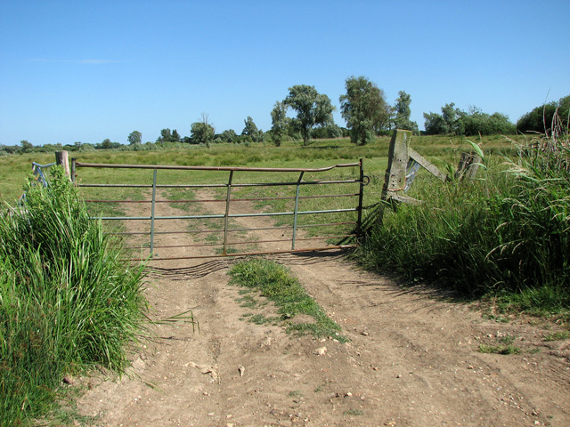 Gate into cattle pasture
