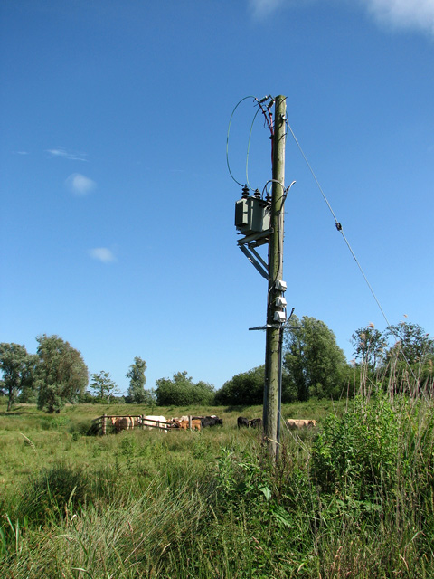 Transformer in cattle pasture south of the River Waveney