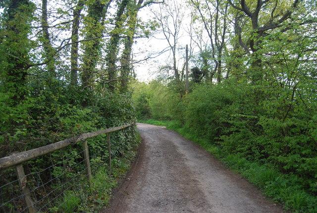 Clearwater Lane (Sussex Border Path) near Hammonds Farm