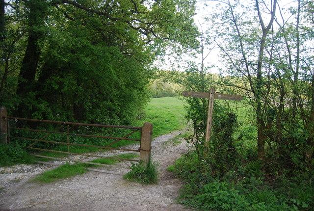 Fingerposts, Sussex Border Path, Hammond's Farm