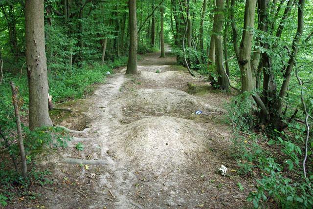 Bike jumps by the Cuckoo Trail