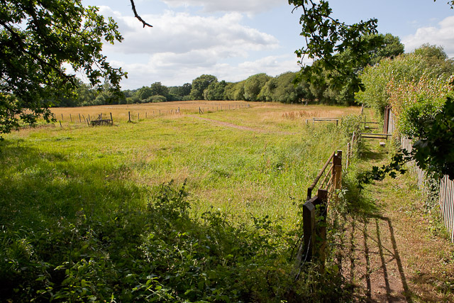 Field and footpath north of Green Lane at Emer Farm
