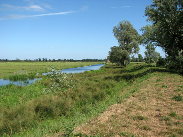 Drainage channel north of the River Waveney