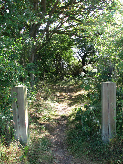 Footpath by The Shrublands