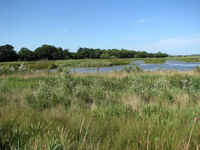 Open water in Short Dam Level