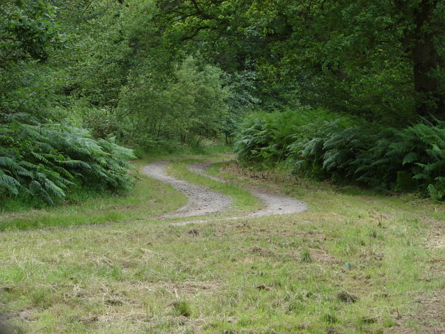 Perimeter track, Bisley Ranges