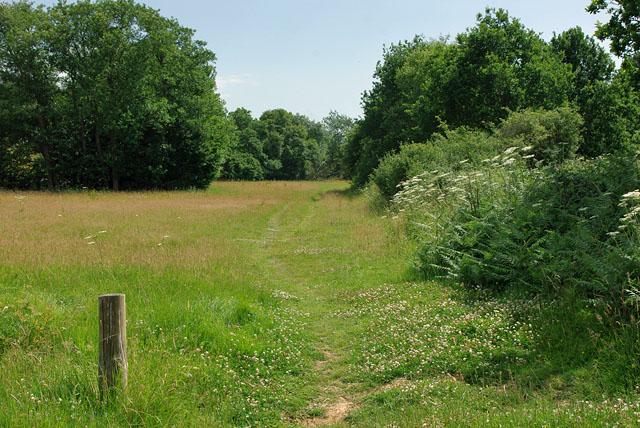 Footpath by Cuckoo Trail