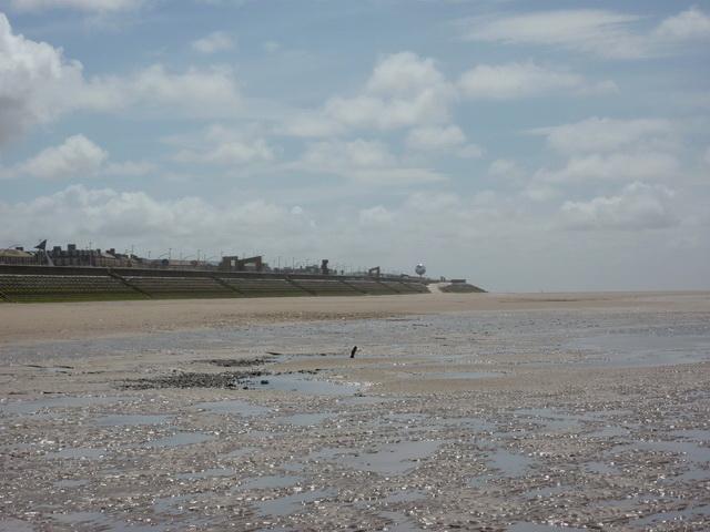 Blackpool Beach, looking south east towards Starr Gate