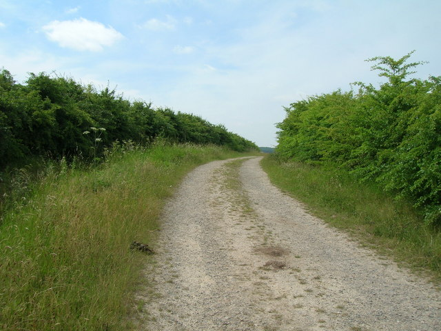 Track, Cotgrave Country Park