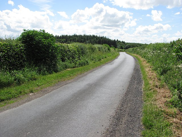 Minor road and Lithtillum Wood