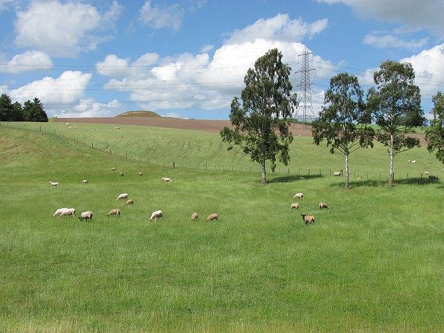 Grassland, Leet Water